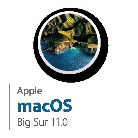 macOS 11.0 Big Sur